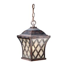 Modern  Contemporary Outdoor Hanging Lights Youll Love  Wayfair