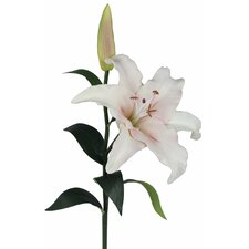Casa Blanca Lily Real Feel Faux Flower