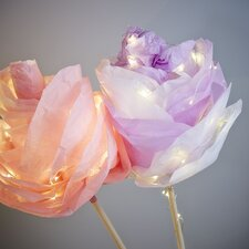25-Light Fairy String Lights (Set of 2)