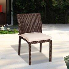 Aquia Creek Dining Side Chair with Cushion (Set of 4)