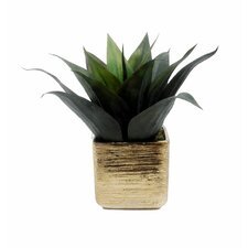 Faux Agave in Textured Pot Desk Top Plant in Planter