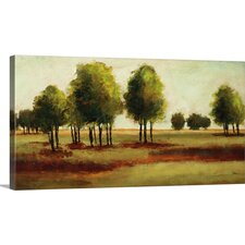 Luminous Landscape' by Randy Hibberd Painting Print on Canvas  by Great Big Canvas