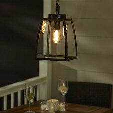 Silver Gulch 1-Light Outdoor Pendant
