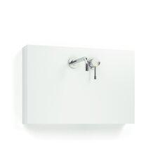 Single Panel Washbasin Mixer
