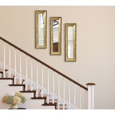 Lustrous Champagne Panel Mirror (Set of 3)  by Mercer41