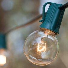 50-Light 50 ft. Globe String Lights