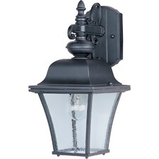 Governor 1-Light Outdoor Wall Lantern