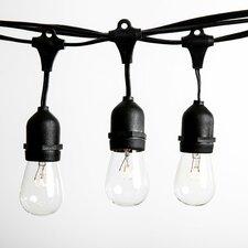 12-Light Globe String Lights