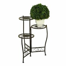 Metal Multi-Tiered Plant Stand by Cole & Grey