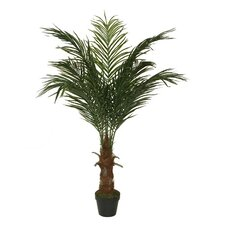 Decorative Artificial Phoenix Palm Tree in Pot