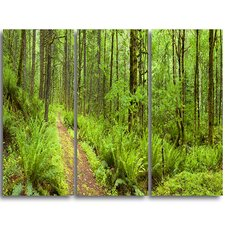 Lush Forest Path Columbia River - 3 Piece Graphic Art on Wrapped Canvas Set  by Design Art
