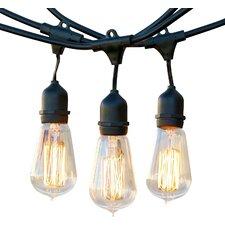 Ambience Pro Vintage 15-Light 48 ft. Globe String Lights