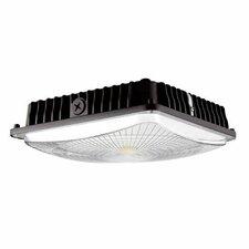 Canopy LED Recessed Trim