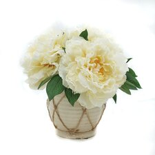 Lush Peonies in Pot  by Darby Home Co