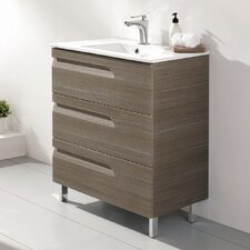 Vitta 24 Single Bathroom Vanity Set by Eviva