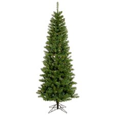 Salem Pencil Pine 5.5' Green Artificial Christmas Tree with 165 Multicolored LED Lights with Stand