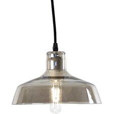Noah 1-Light Indoor Pendant