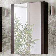 Genipabu 50cm x 69cm Surface Mount Mirror Cabinet