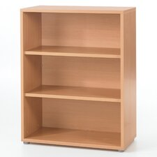 Bianca 44 Standard Bookcase by Latitude Run