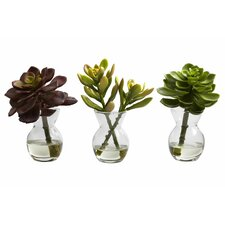 Faux Succulent in Glass Vases (Set of 3)