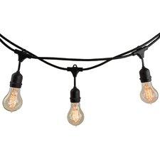 10-Light 14 ft. String Light