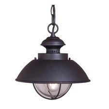 Garrick 1-Light Outdoor Hanging Lantern