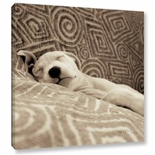 Dog Tired Photographic Print on Wrapped Canvas