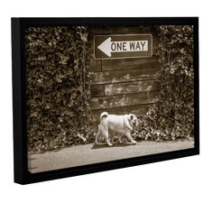 Which Way Framed Photographic Print on Wrapped Canvas