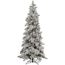 Flocked Kodiak 6' White Spruce Artificial Christmas Tree with Unlit