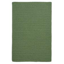 Gilmour Moss Green Solid Indoor/Outdoor Area Rug