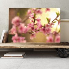 Spring Bloom Flowers Photographic Print on Canvas