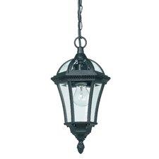 Lora 1 Light Outdoor Hanging Lantern