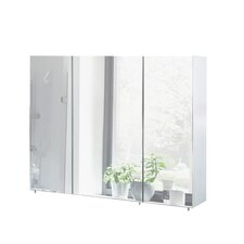 Basic 100cm x 71cm Mirror Cabinet