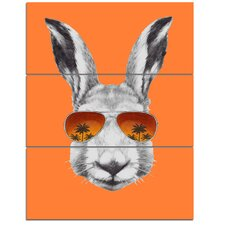 'Funny Rabbit with Sunglasses' 3 Piece Wall Art on Wrapped Canvas Set