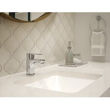 Identity Bathroom Faucet Single Handle with Drain Assembly