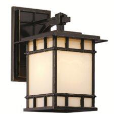 Francis 1-Light Outdoor Wall Lantern
