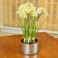Artificial Daffodils Flower in Planter