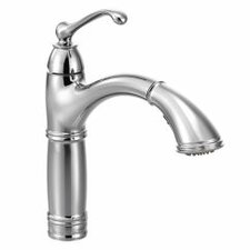 Brantford Single Handle Pull Out Kitchen Faucet