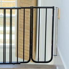 10.5 Gate Extension by Cardinal Gates