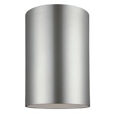 Outdoor Bullets 1-Light Ceiling Flush Mount