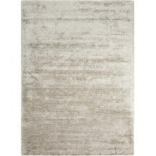 Lunar Hand-Loomed Gray Area Rug