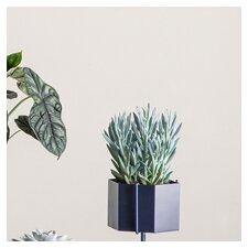 Hexagon Brass Pot Planter
