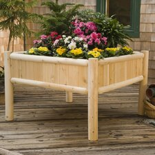 4 ft x 4 ft Cedar Raised Garden
