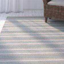 Wexford Blue Mist/Sand Indoor/Outdoor Area Rug