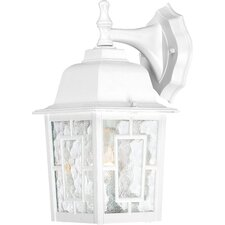 Timmons 1-Light Outdoor Wall Lantern