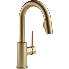 Trinsic® Kitchen Single Handle Pull-Down Bar / Prep Faucet