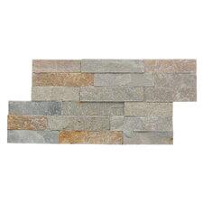 Canyon Random Sized Natural Ledgestone Wall Tile (Set of 6)