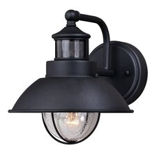 Harwich Dualux® 1-Light Outdoor Barn Light