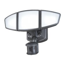 Omega 3-Light Security Light