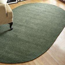 Chenille Reversible Green Indoor/Outdoor Area Rug